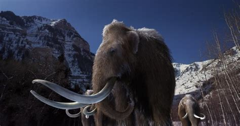 Extinct Animals and Titans Of The Ice Age 3D | Planning