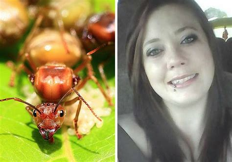 Alabama mother-of-two killed by fire ants, a day after her